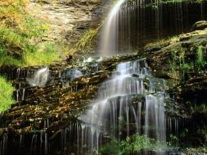 Hojas otoñales sobre la cascada