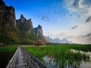 Humedales en Tailandia