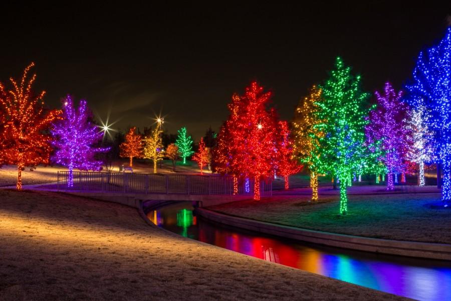 Luminosos rboles navide os al anochecer 73474 - Fotos arboles navidenos ...