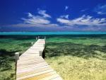 Pasarela de madera sobre el mar