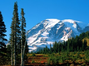 Monte Rainier (Washington)