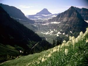 Monte Reynolds (Parque Nacional de los Glaciares, Montana)