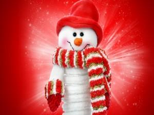 Muñeco de nieve con gorro, bufanda y guantes