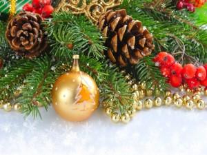 Hermosa decoración de Navidad