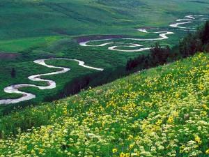 Río serpenteante