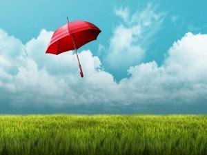 Paraguas volando por encima del campo verde