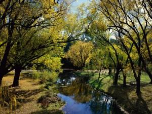 Mesas de pícnic junto al río