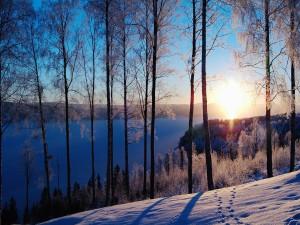 Sol brillando sobre un paisaje nevado