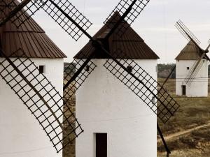 Molinos de viento en Mota del Cuervo (Cuenca, España)