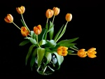 Tulipanes amarillos en un jarrón