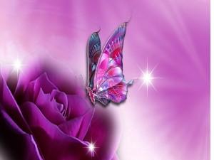 Mariposa revoloteando sobre una rosa