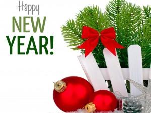"""Te deseo un """"Feliz Año Nuevo"""""""