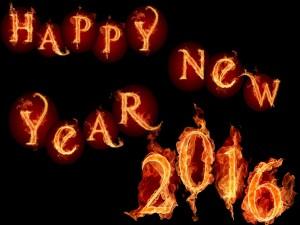 """Llamas en """"Feliz Año Nuevo 2016"""""""
