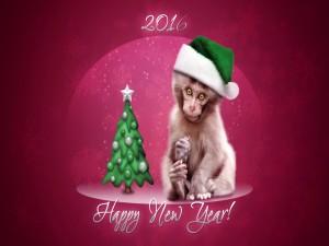 Año del mono ¡Feliz Año Nuevo 2016!