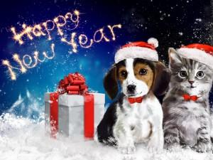 Perrito y gatito celebrando el Año Nuevo