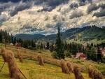 Nubes grises sobre los campos