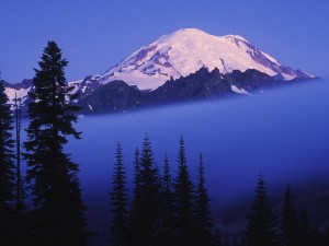 Niebla bajo el Monte Rainier (Washington)