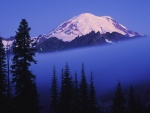Niebla bajo el Monte Rainier (Washington)