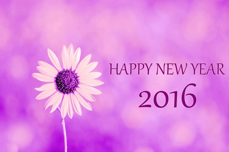 """Que tengan un """"Feliz Año Nuevo 2016"""""""