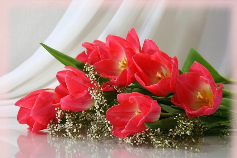 Impresionante ramo de tulipanes