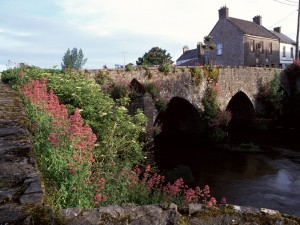 Flores en un hermoso puente