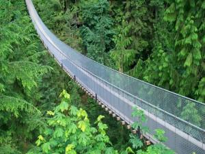 Puente colgante de Capilano (Vancouver, Canadá)