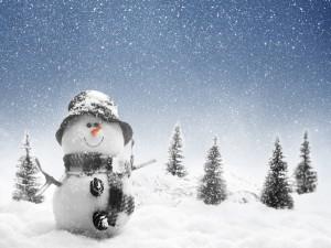 Un simpático muñeco de nieve