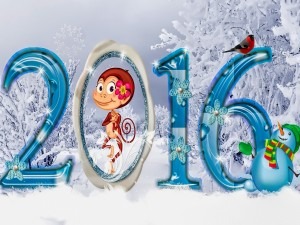 Nuevo Año 2016
