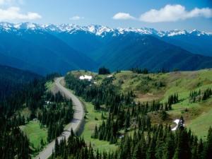 Montañas en el Parque Nacional Olympic