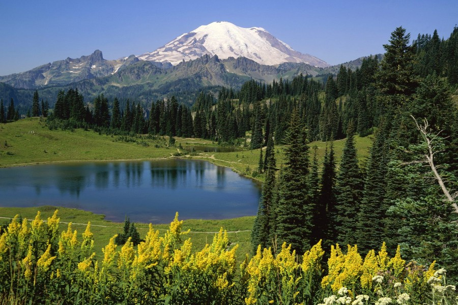 Lago bajo el Monte Rainier