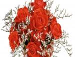 Elegante ramo de rosas rojas y flores blancas