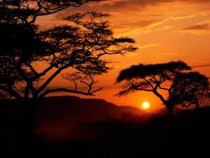 Amanecer en el Parque Nacional Serengueti (Tanzania, África)