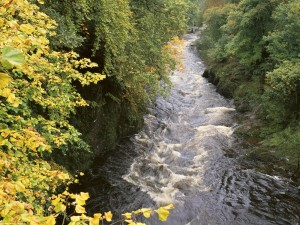 Estrecho cauce de un río