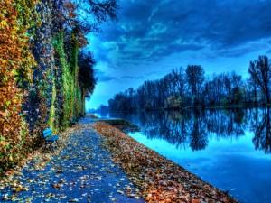 Hojas otoñales a orillas del río