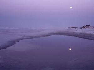 Luna reflejada en el agua
