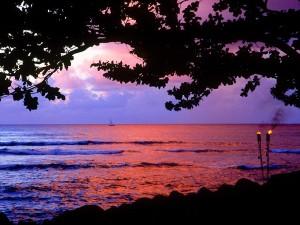 Antorchas junto al mar