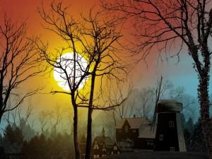 El sol se esconde detrás de los árboles