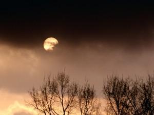 Luna llena entre nubes