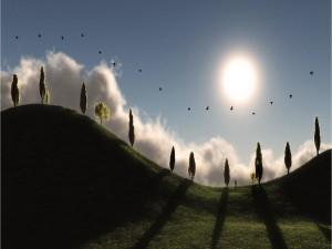 Sol y pájaros sobre las colinas