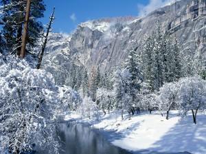 Nieve en Yosemite