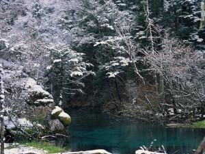 Increíble paisaje de invierno