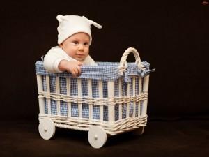 Lindo bebé en un canasto