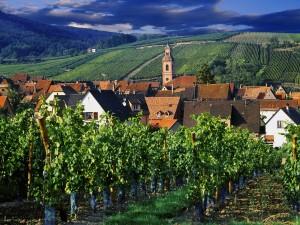 Vista de Riquewihr (Francia)
