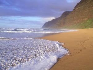 Playa Polihale (Hawái)