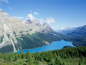 Lago Peyto (Alberta)