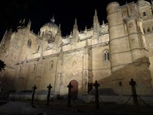 La catedral nueva de Samalamanca en la noche