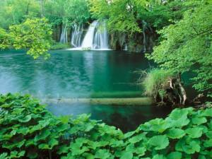 Cascada en el Parque Nacional de los Lagos de Plitvice (Croacia)