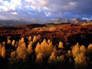 Otoño en el Parque Nacional Grand Teton