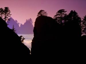Amanece en el Parque Nacional Olympic (Washington)