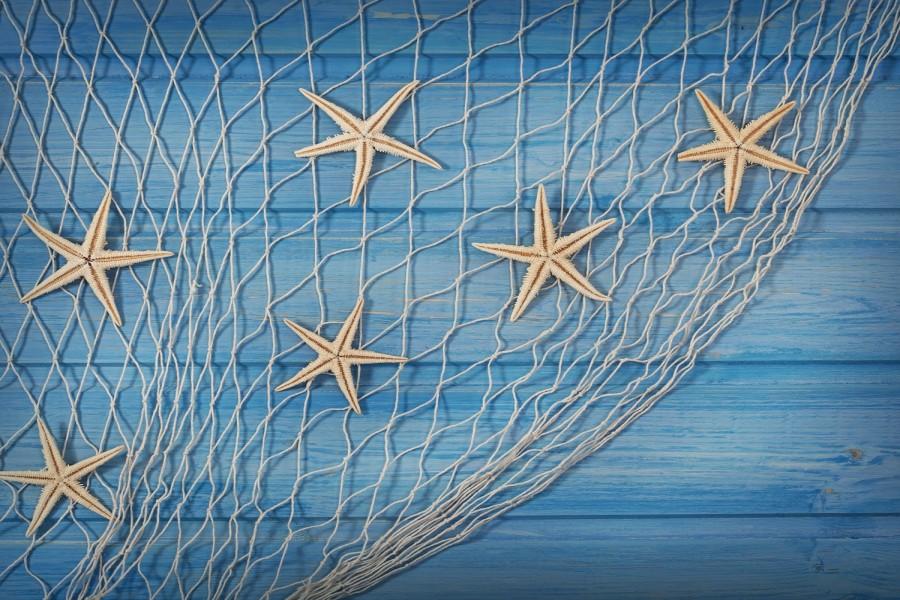 Estrellas De Mar En Una Red De Pesca (74642